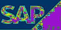 cursus SAP Basis