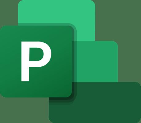Microsoft Project Basis